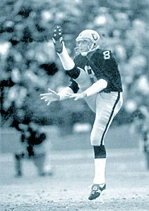 Ray Guy - Oakland Raiders - Punter ...HE COULD PUNT BETTER THAN ANYONE BEFORE OR AFTER HIM...HOF GUYS GET YOUR HEADS ON STRAIGHT...LOOK AT HIS STATS...