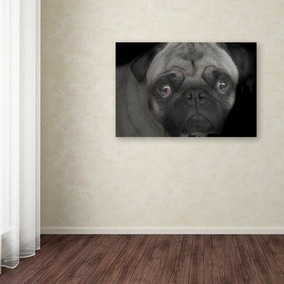 """Trademark Art 'Pug' Photographic Print on Wrapped Canvas Size: 12"""" H x 19"""" W"""