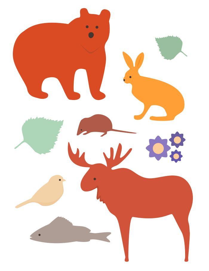 Forest Animals  - Tintin Illustrations #illustration #vectorillustration