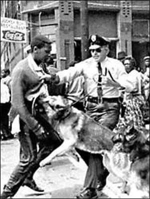 """Police use dogs to quell civil unrest in Birmingham, Ala., in May 1963. Birmingham's police commissioner """"Bull"""" Connor also allowed fire hoses to be turned on young civil rights demonstrators. These measures set off a backlash of sentiment that rejuvenated the flagging civil rights movement."""