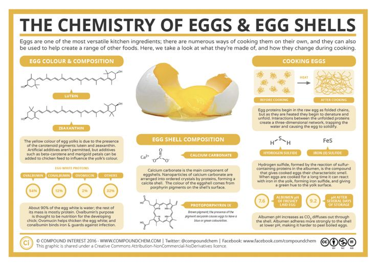 Compound Interest - The Chemistry of Eggs & Egg Shells