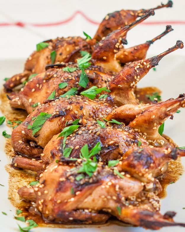 wild game bird recipes | 14 Homemade Wild Game Recipes For A Mouthwatering Feast, check it out at http://homemaderecipes.com/14-wild-game-recipes/