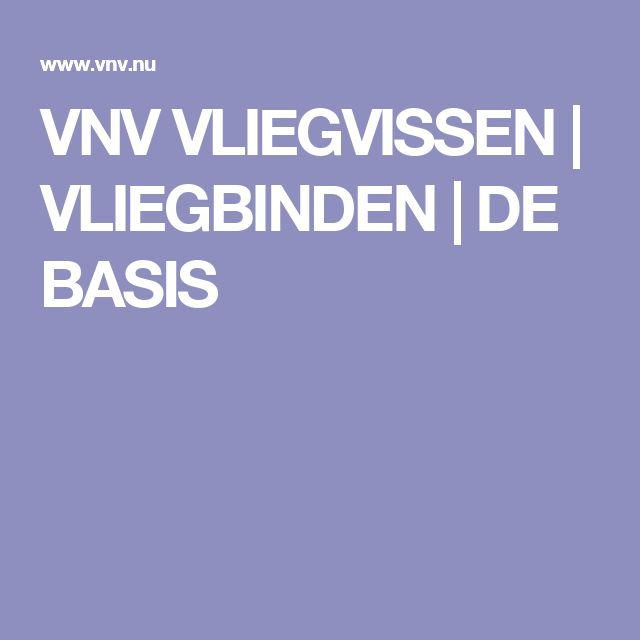 VNV VLIEGVISSEN | VLIEGBINDEN | DE BASIS