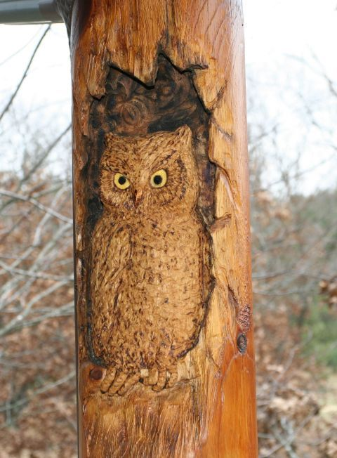 Best images about log carving on pinterest