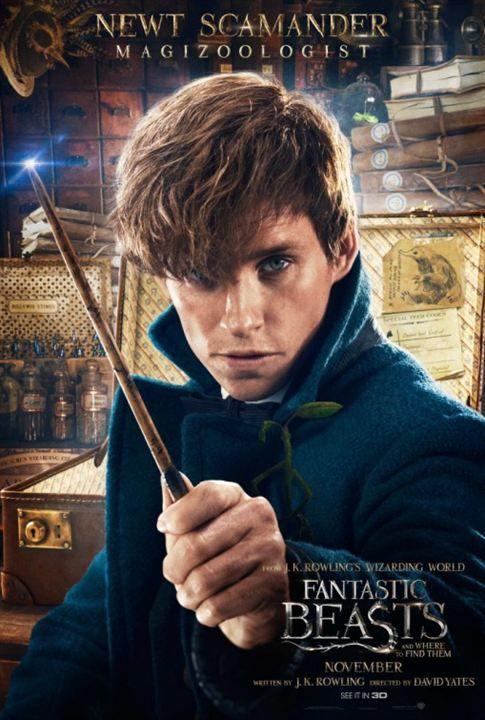 """""""Les animaux fantastiques"""" - Un film qui m'a littéralement emporté dans son univers magique."""