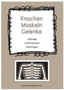 Unser Körper: Knochen, Muskeln und Gelenke - Gehirn und Nervensystem - Haut - Herz und Blutkreislauf - Immunsystem - Lunge und Atmung - Mund und Zähne - Schlaf - Verdauung