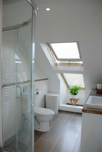 loft en suite shower room?  63391_37971_IMG_05_0000.jpg (428×639)