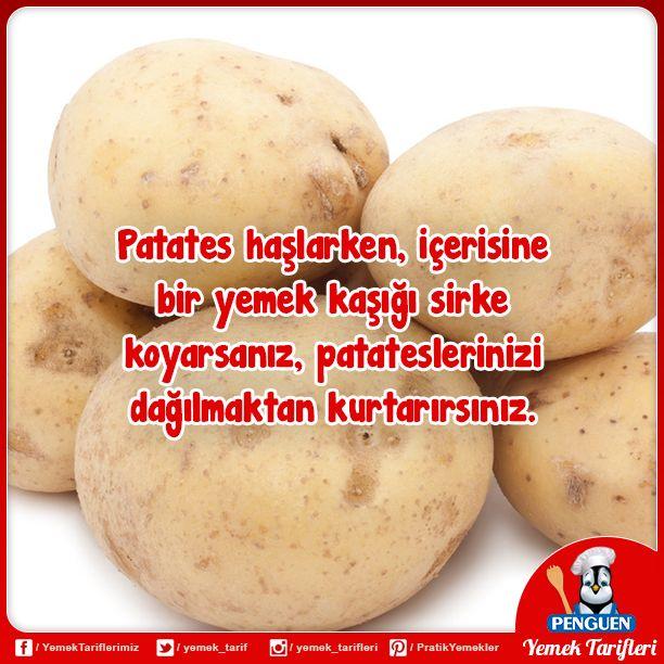 Patates haşlarken, içerisine bir yemek kaşığı sirke koyarsanız, patateslerinizi dağılmaktan kurtarırsınız.