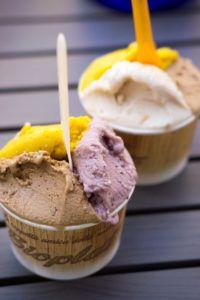 Come fare il gelato con la gelatiera - Gelato in casa