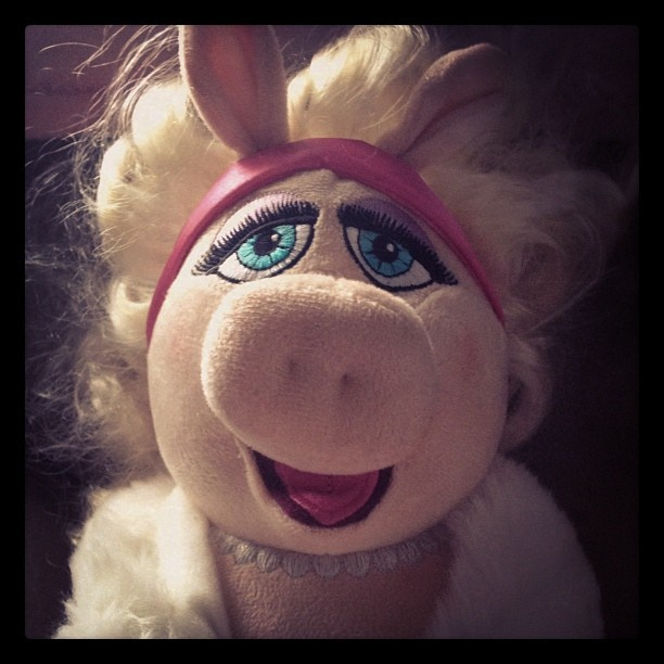 158 Best Images About Kermit Miss Piggy On Pinterest: 17 Best Images About Muppet Love On Pinterest