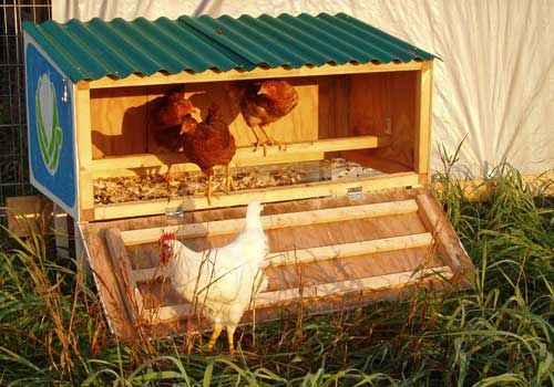 Here's a tiny little chicken coop for your tiny little flock. Though it doesn't have wheels, two people can schlep it easily.