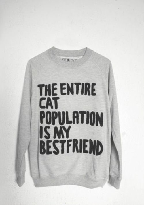 About sums it up: Cats, Best Friends, Style, Bestfriends,  Tees Shirts, Catladi, Sweatshirts, Cat Sweaters, Crazy Cat Lady