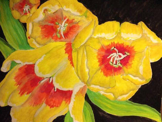 Tulips for Queen Bee