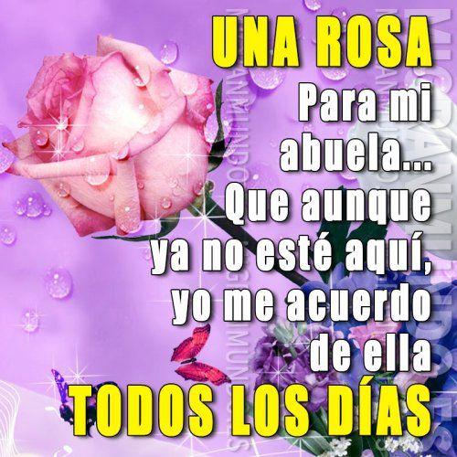 Una rosa para mi abuela - Mi Gran Mundo