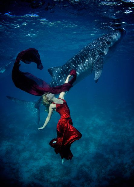 I'm in love with this fashion shoot where the model was swimming with whale sharks truly breathtaking x