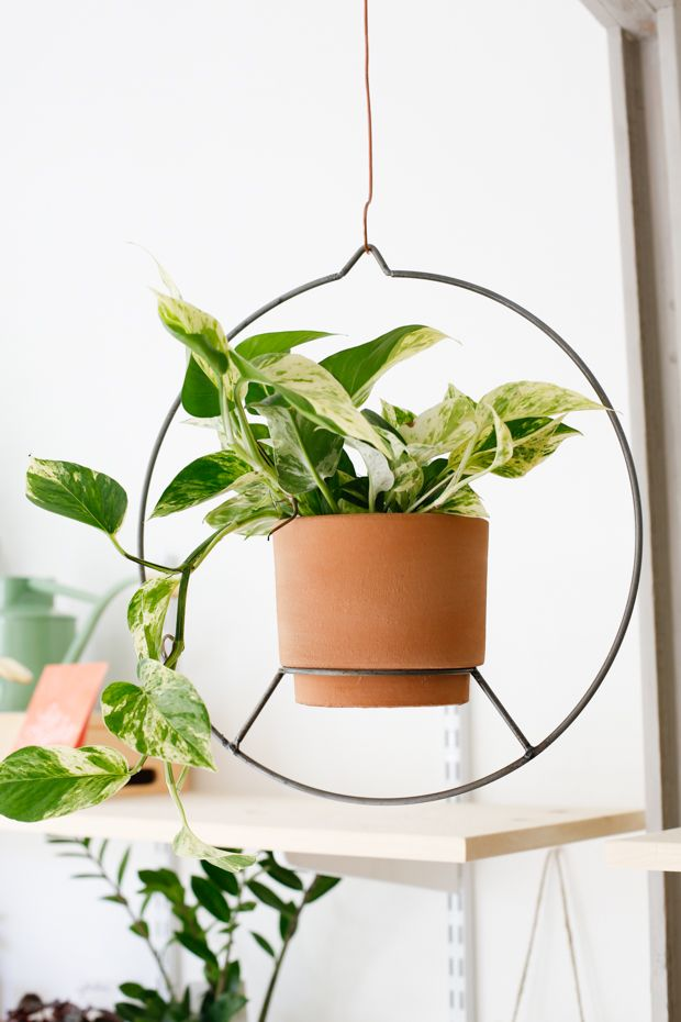 Terra Cotta Wire Hanging Planter Planters Hanging Planters Terracotta