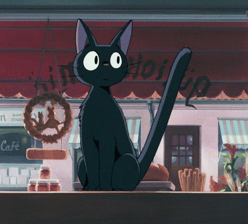 I wish one of the black cats in my backyard would be a sweet kitty like JiJi..Wishful thinking..but I would love my own JiJi❤