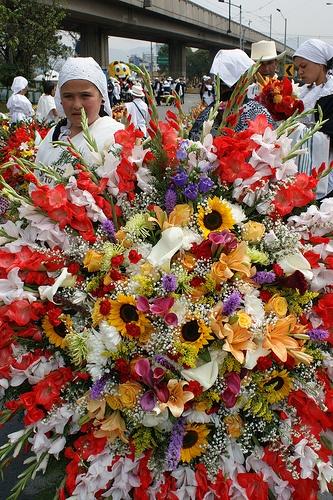 Desfile Silleteros