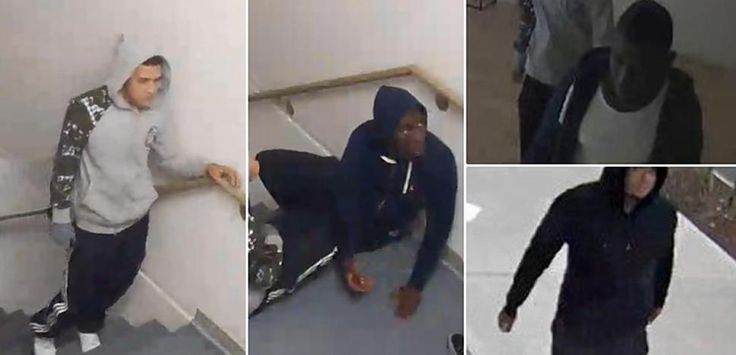 Bronx man tied up, robbed by three goons after Facebook-arranged 'date,' NYPD says
