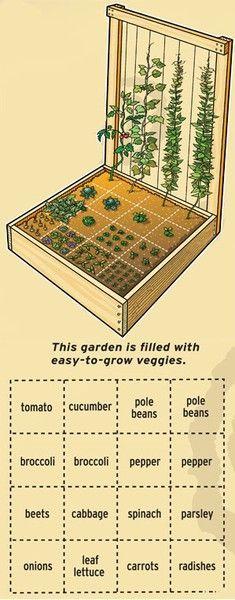 Configuration d'une jardinière