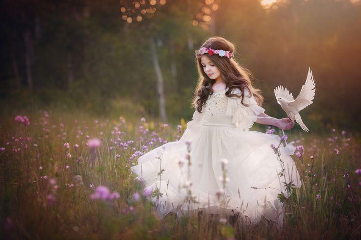 Фотография White Dove автор Amber Bauerle | Frosted Productions на 500px