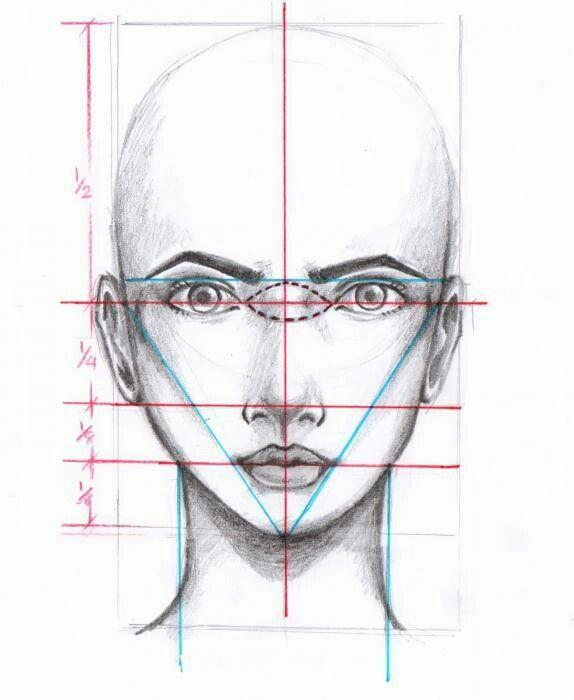 Схема для рисования портретов.