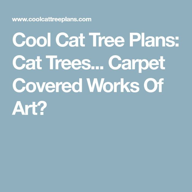 The 25 best cat tree plans ideas on pinterest cat tower for Cool cat perches