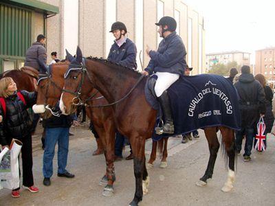 La Forestale promuove il Cavallo del Ventasso