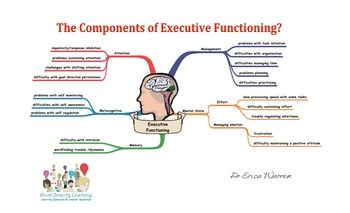 Free! Graphic organizer components of executive functioning.
