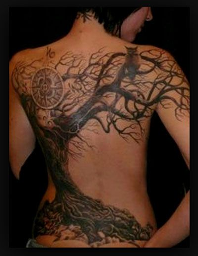 25 best ideas about bonsai tree tattoos on pinterest bonsai tattoo watercolor trees and. Black Bedroom Furniture Sets. Home Design Ideas