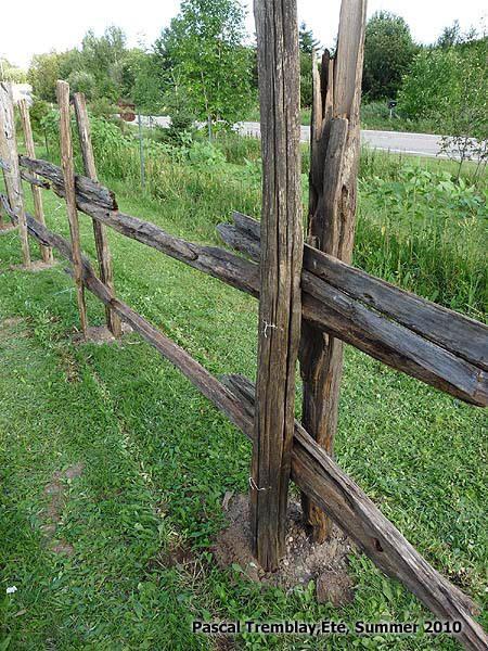 Split Rail Fence Design Idea - DIY cedar rail fence - Rustic rail fence. #diy #outdoor. Instructions: http://www.usa-gardening.com/fence/split-rail-fence-3.html