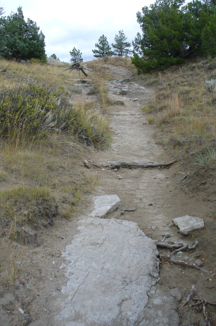 A Bumpy Ride If You Were Still Inside Your Wagon At The Oregon Trail Ruts,
