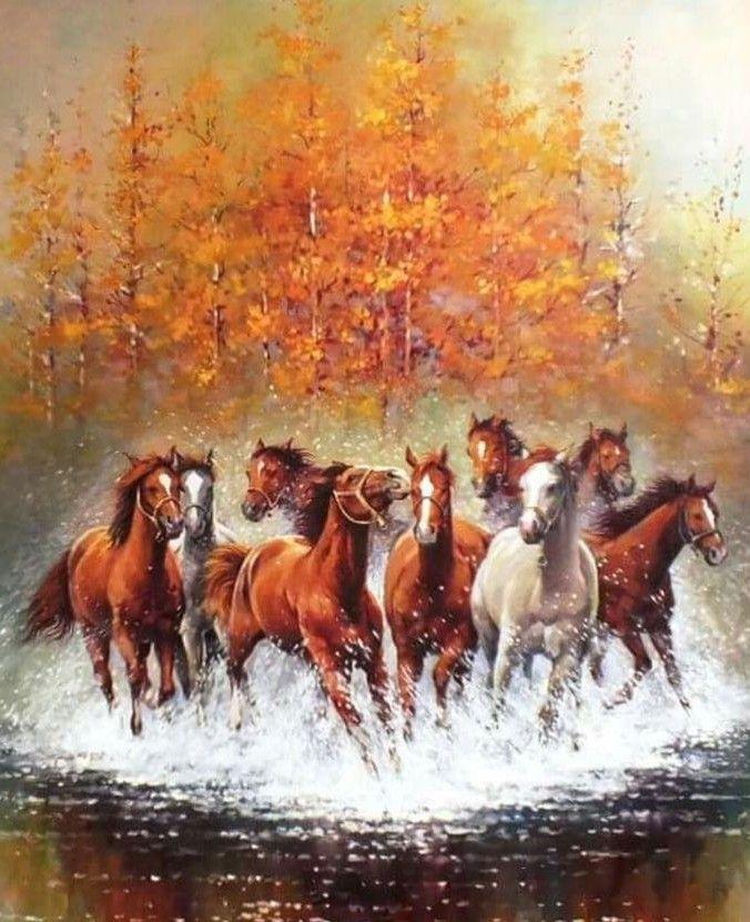 ป กพ นโดย Duchess ใน Horses Beauty ม า ภาพศ ลปะ ส ตว