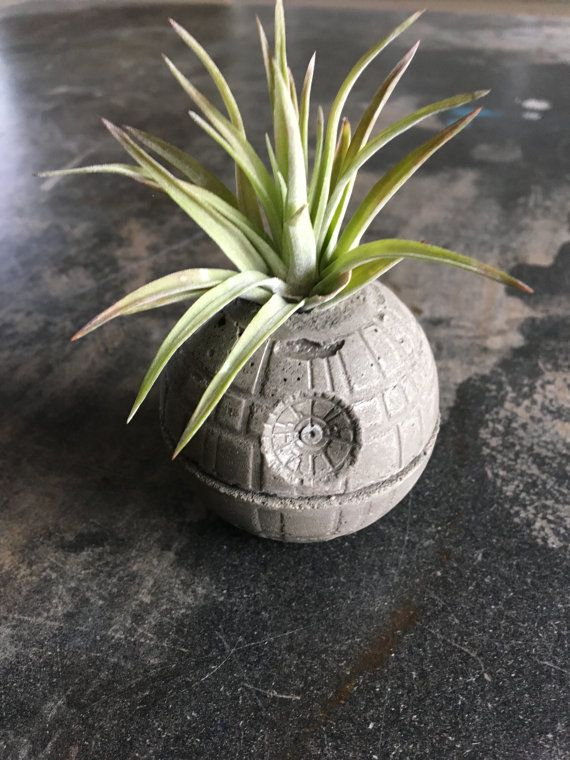 Death Star Concrete Planter - Single Planter - Includes Air PLant - Star Wars - Decor