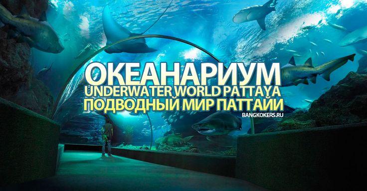 Океанариум Underwater World Pattaya (Подводный мир Паттайи)  Авиабилеты Москва - Бангкок от 24000 руб.  Океанариум Underwater World Pattaya (Подводный мир Паттайи)  расположен на Sukhumvit road недалеко от супермаркета Tesco Lotus в южной Паттайе. Океанариум относительно небольшой по сравнению с океанариумом в Бангкоке хотя на тех кто не был в океанариумах заграницей Underwater World Pattaya произведет незабываемое впечатление.  При входе вы увидите небольшой бассейн так называемый Touch…