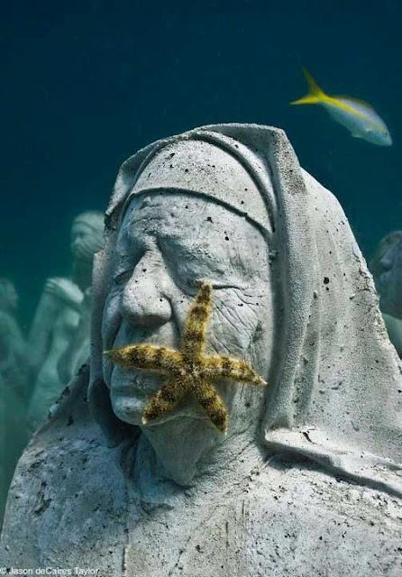 Nun in the ocean