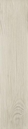 Thorno Bianco Płytki podłogowe - 21,5x98,5 - Thorno
