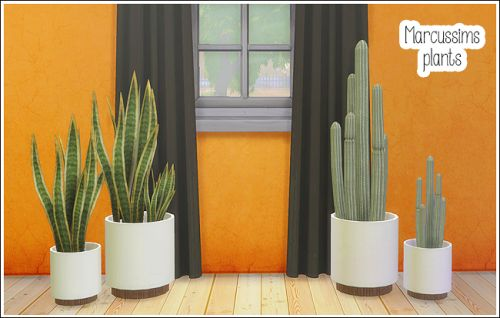 Marcussims plants - 4 conversions (Re-upload + new)A re-upload the Snake plants + 2 new conversions, planter cactuses.The set includes:Snake plantSnake plant smallPlanter cactusPlanter cactus smallCredit: Marcussims for the meshesDOWNLOAD (dropbox) Separate & merged files