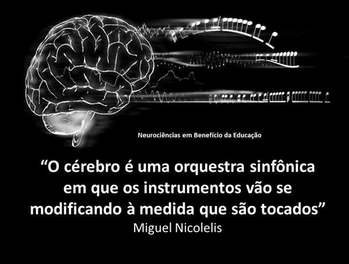 Cérebro - uma orquestra sinfônica…