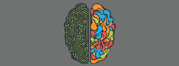 Brain circuitry