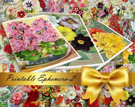 BOTANICALS Pastel-25 Set Digital Collage Pack 54 Instant Download Ephemera Pack journal cards paper pack junk journal kit Printable Ephemera