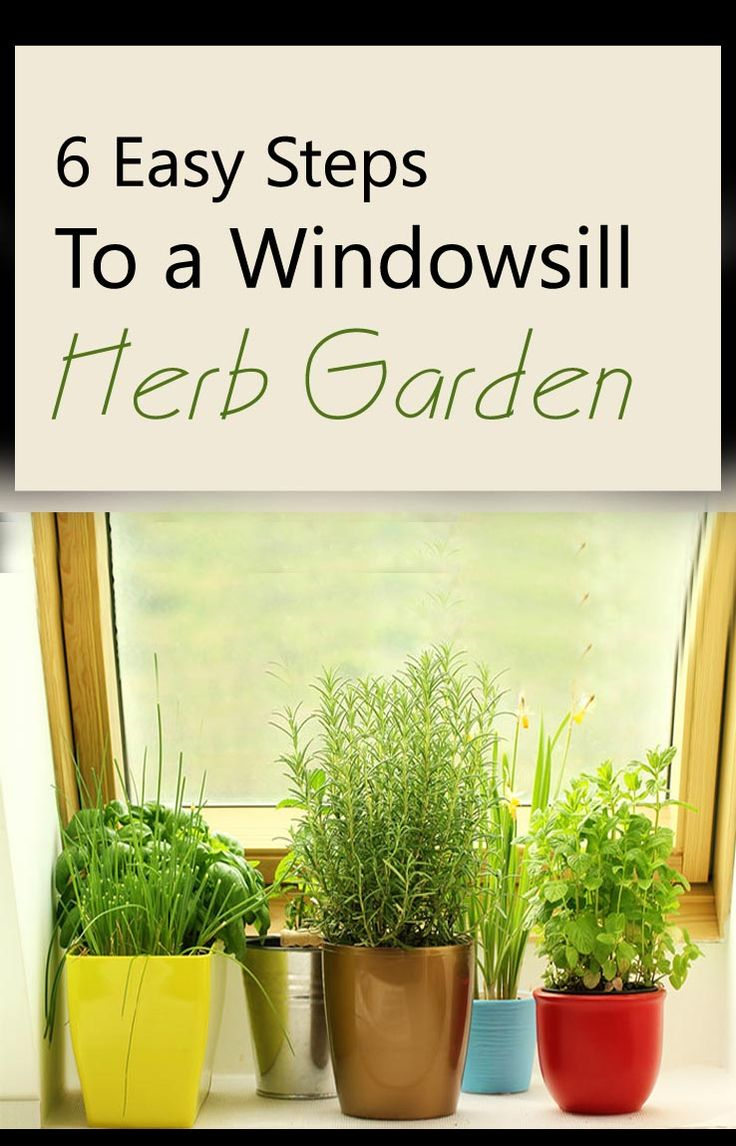 Indoor Window Sill Herb Planter Part - 32: How To Make A Windowsill Herb Garden