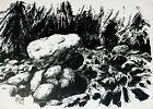 Paul Groß 1873-1942 Felsen – Landschaft Harz neusachlich Tuschezeichnung 1931 – #felsen #landschaft #neusachlich #tuschezeichnung –