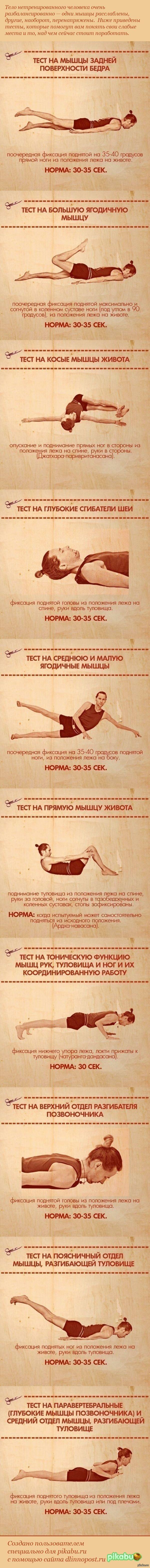 10 упражнений, которые покажут ваши слабые места   Здоровье, ВКонтакте, Физминутка, Баянометр дурит, длиннопост