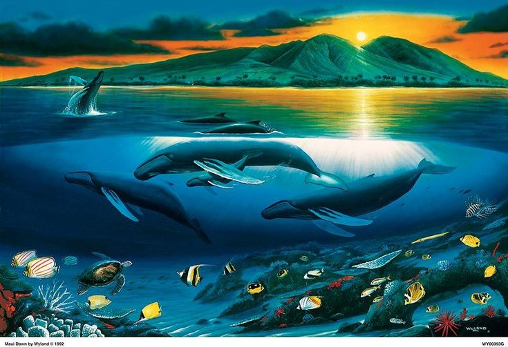 Art lovers can gather to view the works of multiple artists at Wyland Galleries Port Canaveral.
