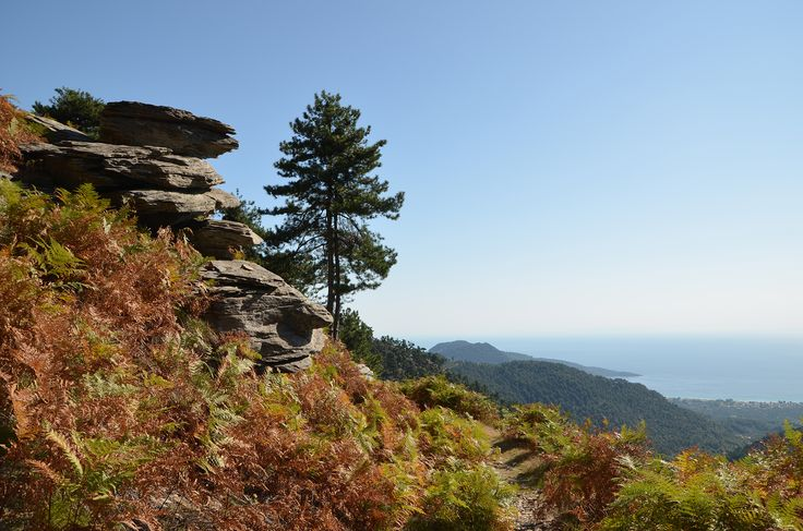 View from a hiking trail on mount Ipsarion over the coast line of Thassos Island Greece.