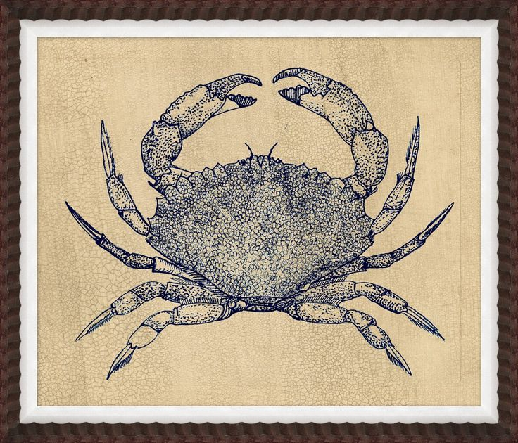 RESELECT Indigo Crab Study 1 - Coastal - Our Product