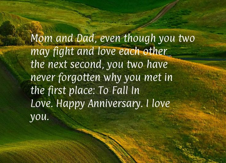 Mom and Dad, even though you two may fight and love each other the next second, you two have never forgotten why you met in the first place: To Fall In Love. Happy Anniversary. I love you.
