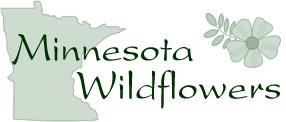 Great website that tells you everything you ever wanted to know about  Minnesota Wildflowers. Even has a page that has native wildflowers sorted by color. I will need this for when I own a hobby farm with a beautiful hillside to look over from my kitchen window. ;)