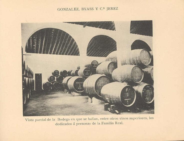 Vista parcial de la Bodega en que se hallan, entre otros vinos superiores, los dedicados a personas de la Familia Real.